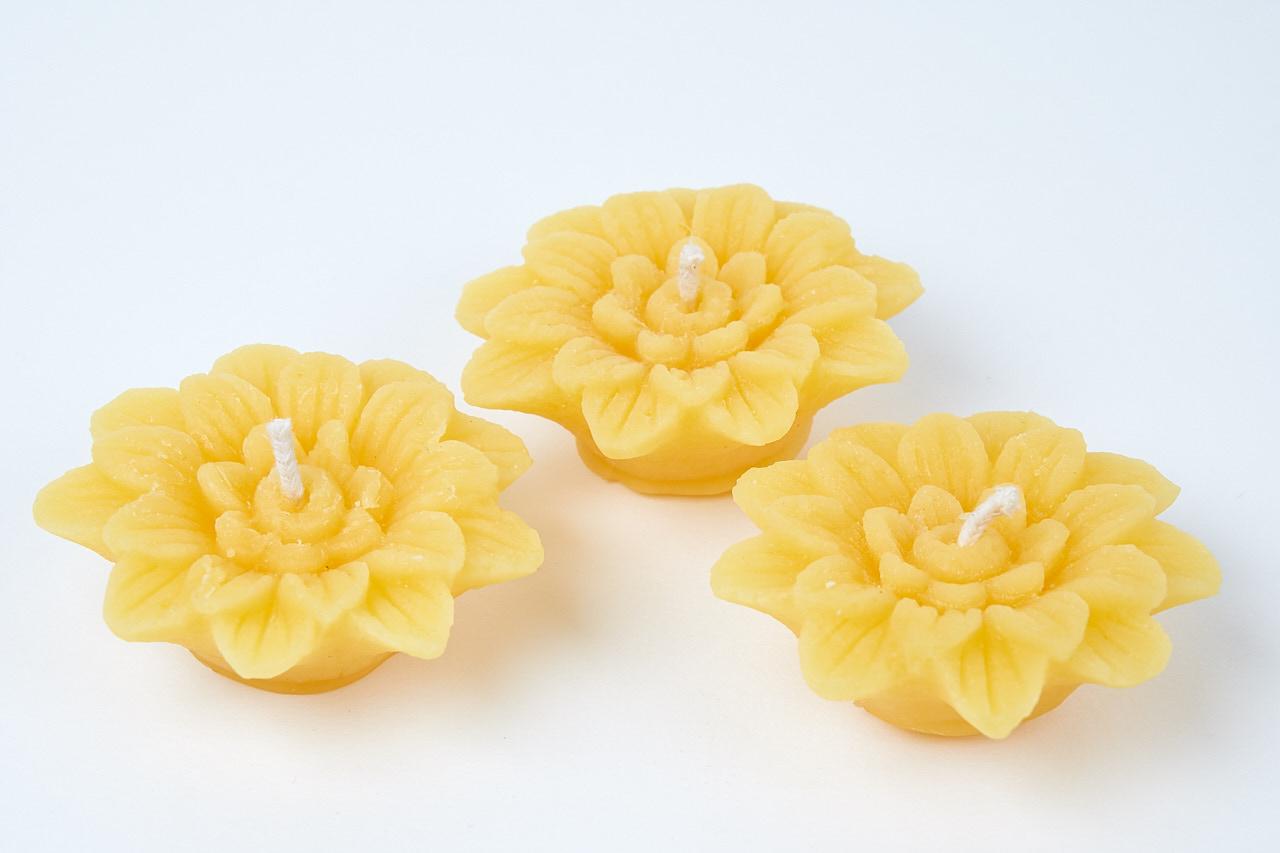 Schwimmkerze Motiv Blume aus 100% Bienenwachs